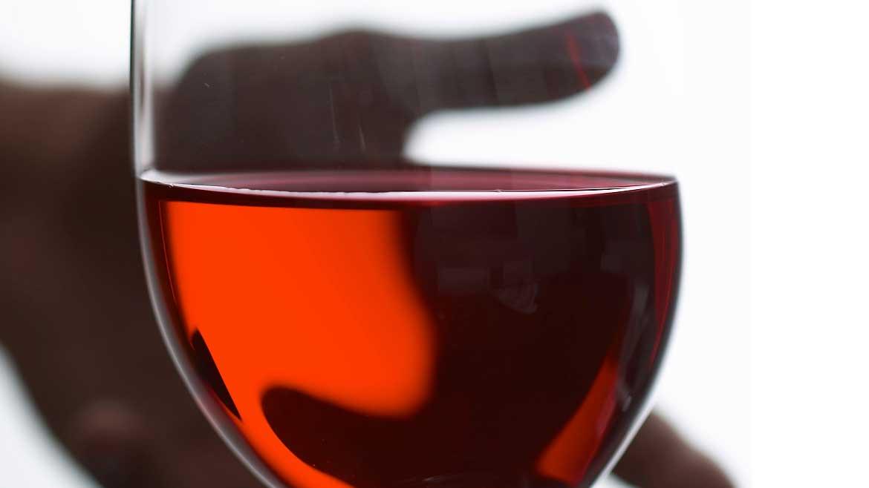 About wine Cviček PTP